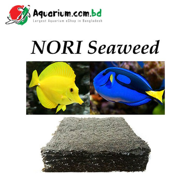 Algae Sheet- Nori for Marine Aquarium Fish