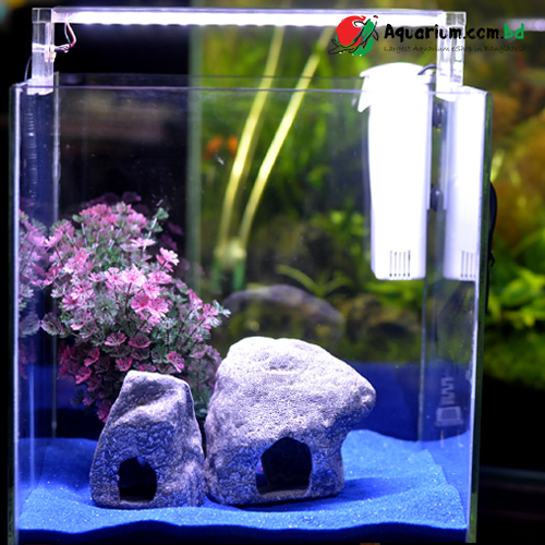 Mini Table Top Aquarium(3)-12 Inch Crystal Glass