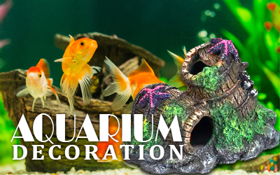 Aquarium Decoration item in Bangladesh