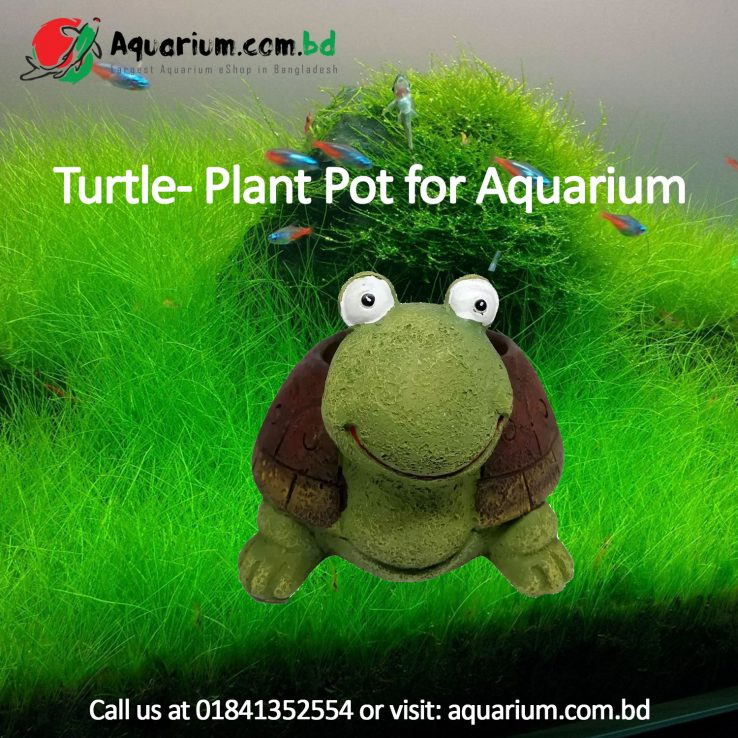 Turtle- Plant Pot for Aquarium