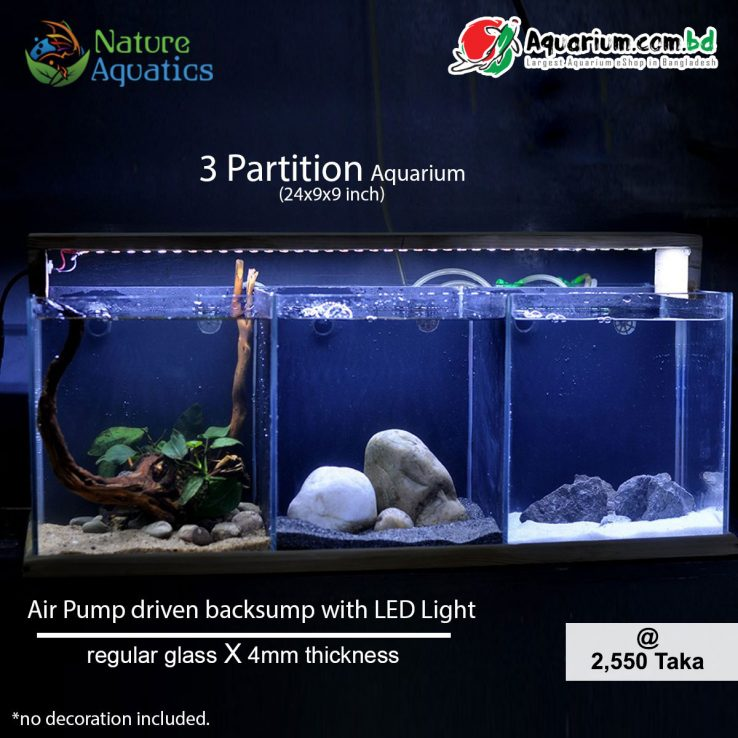 3 Partition Aquarium- 24x9x9 inch(Air Pump driven backsump with LED Light)