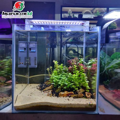 12 Cube Planted Tank w Complete Setup