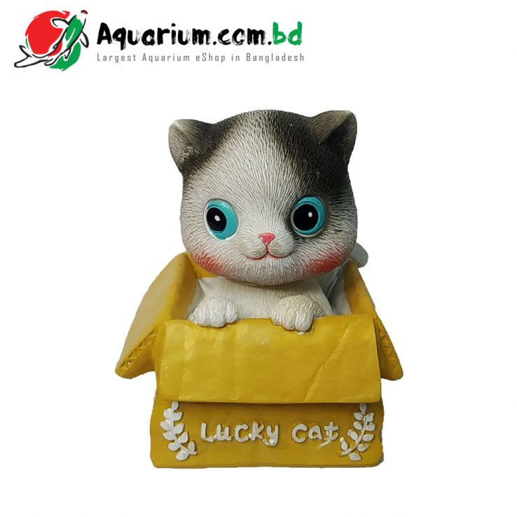 Lucky Cat- Head Shaking Cat